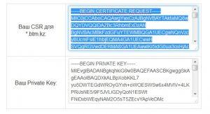 Сохраните оба сгенерированых кодов у себя на компьютере и скопируйте выделенный синим код (верхний) в предыдущее окно заказа сертификата
